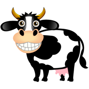 Black and white cow with big cheesy grin